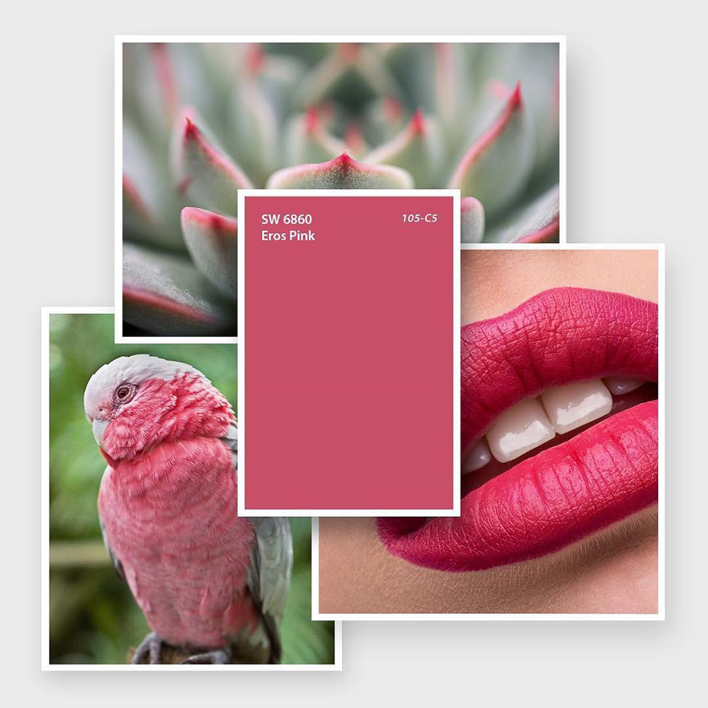 Eros Pink SW 6860