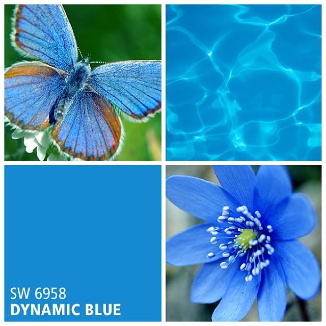SW 6958 Dynamic Blue