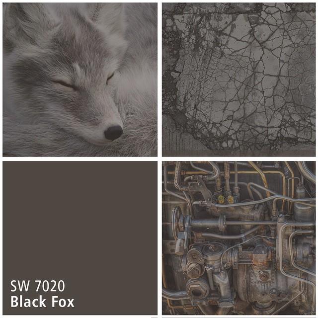 SW 7020 Black Fox
