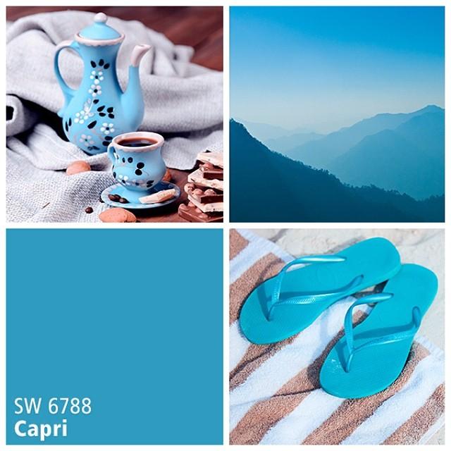 SW 6788 Capri
