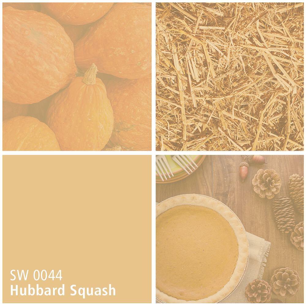 SW 0044 Hubbard Squash