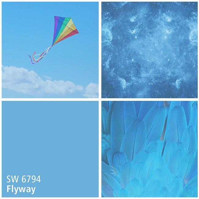 SW 6794 Flyway