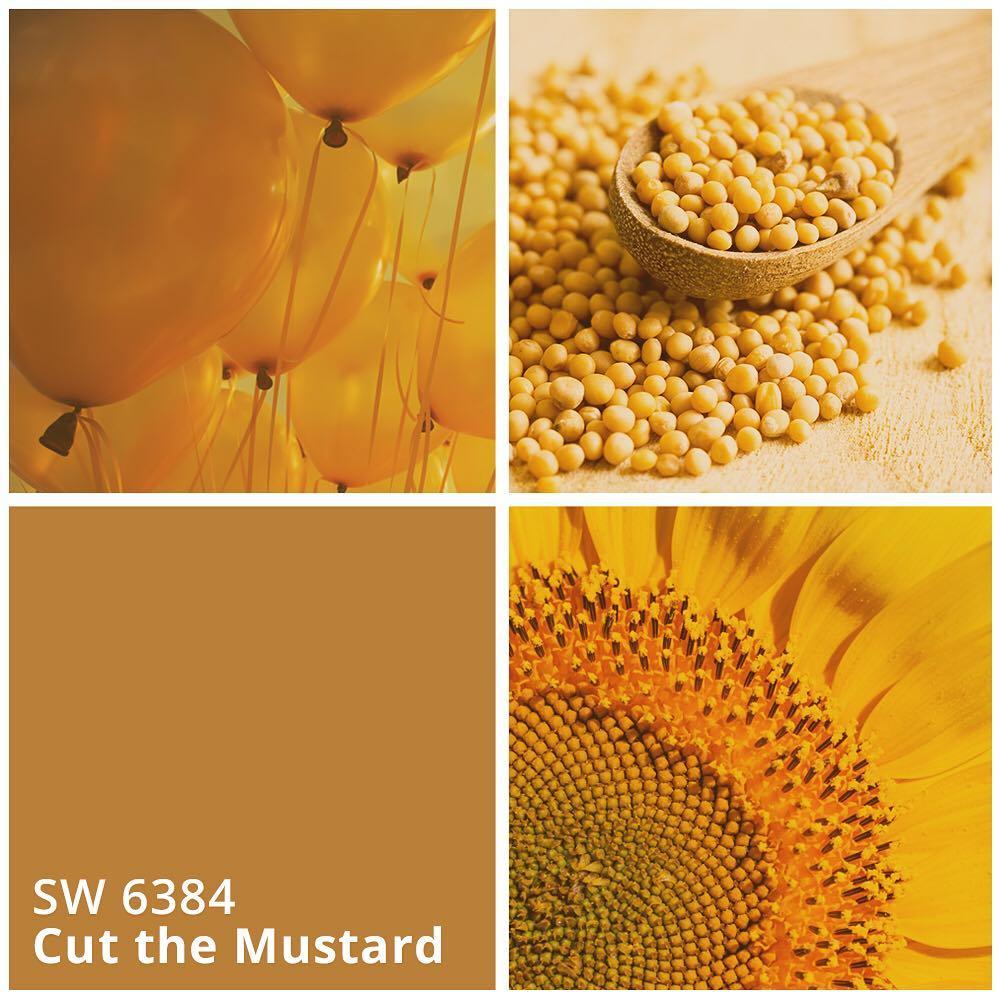 SW 6384 Cut the Mustard