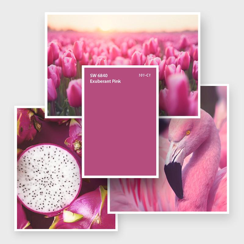 SW 6840 Exuberant Pink