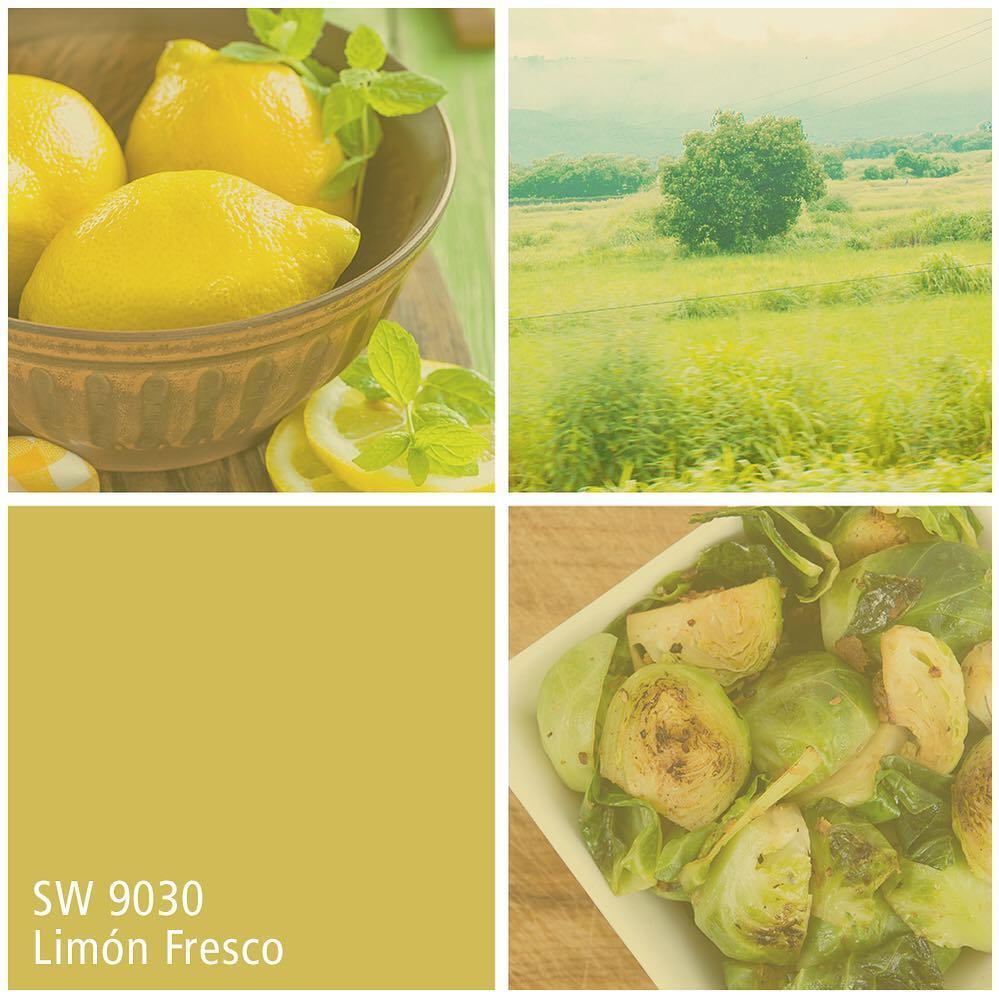 SW 9030 Limon Fresco