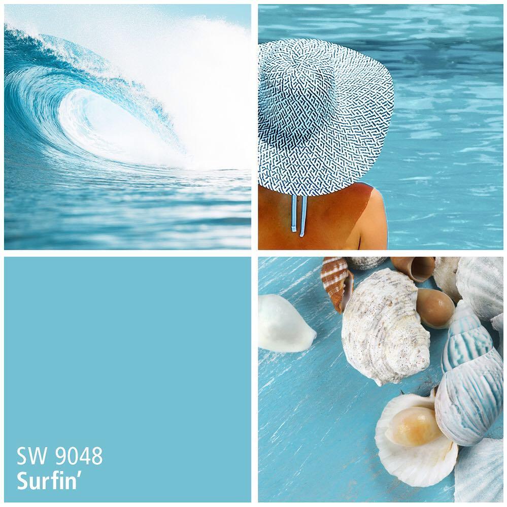 SW 9048 Surfin