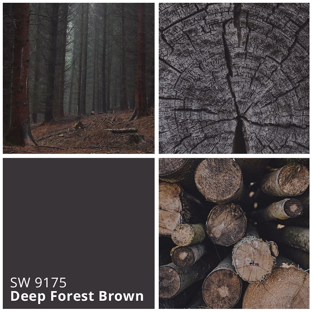 SW 9175 Deep Forest Brown