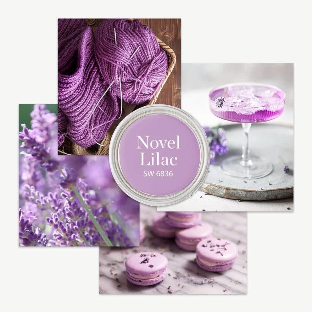 SW 6836 Novel Lilac